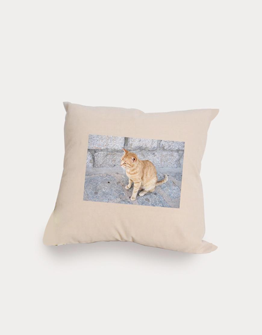植絨抱枕 - 12色 I 含枕心 I
