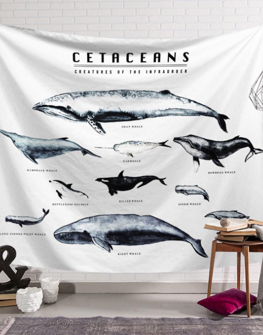 鯨魚群掛簾